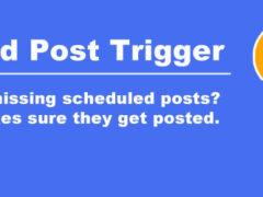 Problema con el plugin WP Customer Area